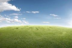 Imagem do campo de grama verde Imagens de Stock Royalty Free