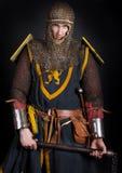 Imagem do cavaleiro Imagem de Stock Royalty Free