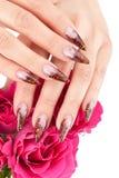 Imagem do close up de pregos bonitos Imagem de Stock Royalty Free