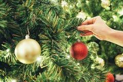 Imagem do close up de uma mão que decora a árvore de Natal com as quinquilharias efervescentes vermelhas do brilho Conceito e ide Fotos de Stock