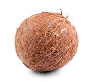 Imagem do close-up do coco tropical, isolada em um fundo branco Fresh tasteful whole coco full of nutritious vitamins fotografia de stock royalty free