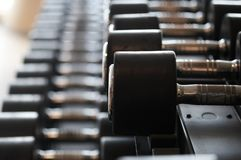 Imagem do close up dos dumbells em um suporte Equipamento do Gym Fotos de Stock Royalty Free