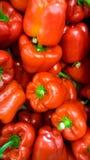 Imagem do close up dos lotes do vermelho pimentas de sino alaranjadas que encontram-se no contador na loja foto de stock royalty free