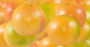 Imagem do close-up maduro delicioso de muitas laranjas foto de stock