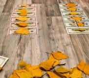 A imagem do dinheiro, dólares e seca o close-up das folhas fotografia de stock
