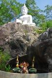 Imagem do dragão tailandês sob a montanha da Buda branca fotografia de stock