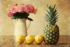 Imagem do estilo do vintage de uma vida imóvel com abacaxi Imagem de Stock Royalty Free