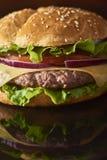 Imagem do hamburguer saboroso fresco fotos de stock