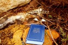 Imagem do Hanukkah judaico do feriado A Bíblia Hebraica Tanakh Torah, Neviim, Ketuvim e castiçal judaico Menorah imagens de stock