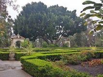 Imagem do labirinto do jardim Imagens de Stock