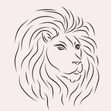 Imagem do leão Fotos de Stock Royalty Free