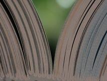 A imagem do livro Imagens de Stock
