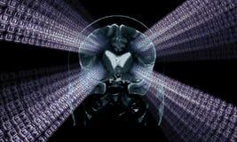 Imagem do mri do cérebro Imagens de Stock