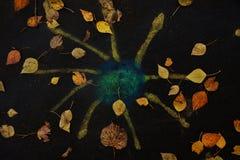 Imagem do outono ilustração royalty free