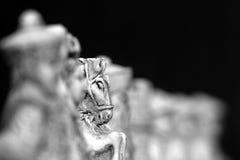 Imagem do perfil de uma parte de xadrez do cavalo fotografia de stock royalty free