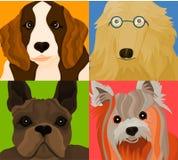 Os cães Fotografia de Stock