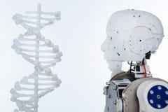 Imagem do robô e do ADN fotografia de stock royalty free