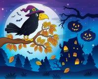 Imagem 5 do tema do corvo da bruxa Fotografia de Stock Royalty Free