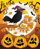 Imagem 6 do tema do corvo da bruxa Imagens de Stock