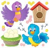 Imagem do tema do pássaro   Imagem de Stock