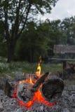 Imagem do vertical do fogo do acampamento Foto de Stock