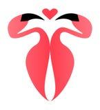 Imagem do vetor com flamingo e coração Fotos de Stock