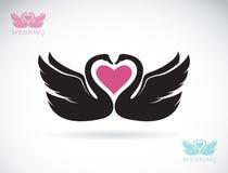 Imagem do vetor de duas cisnes loving Imagem de Stock