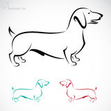 Imagem do vetor de um cão (bassê) ilustração stock