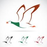 Imagem do vetor de um pato selvagem do voo Fotos de Stock