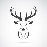 Imagem do vetor de um projeto da cabeça dos cervos ilustração stock
