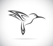 Imagem do vetor de um projeto do colibri Imagem de Stock Royalty Free