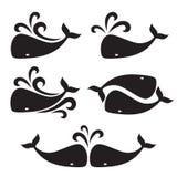 Imagem do vetor de uma baleia grande Imagens de Stock Royalty Free