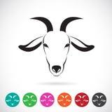 Imagem do vetor de uma cabeça da cabra Imagens de Stock Royalty Free