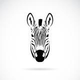 Imagem do vetor de uma cabeça da zebra Foto de Stock Royalty Free