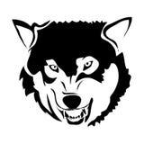 Imagem do vetor do lobo do esboço Imagem de Stock
