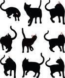 Imagem do vetor - silhueta do gato por sua vez em torno da pose isolada no fundo branco Fotos de Stock