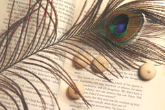 Imagem do vintage com livro aberto Imagem de Stock