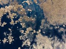 imagem do zangão ideia aérea da área rural com campos e florestas a foto de stock