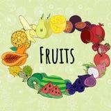 imagem dos frutos diferentes arranjados em um círculo em um fundo verde ilustração stock