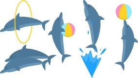 Imagem dos golfinhos, vida marinha do vetor ilustração stock