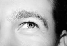 Imagem dos olhos azuis do ` s do homem imagem de stock royalty free