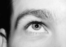 Imagem dos olhos azuis do ` s do homem fotografia de stock royalty free