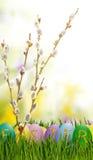 Imagem dos ovos da páscoa e das flores em um fundo verde, Imagem de Stock Royalty Free