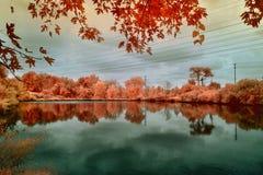 Imagem infravermelha de uma lagoa Fotografia de Stock