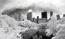 Imagem infravermelha do panorama do Central Park Fotografia de Stock Royalty Free