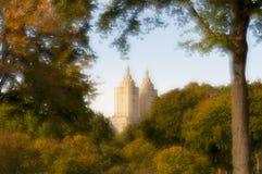 Imagem macia do foco das árvores e do folliage em Central Park, NY Foto de Stock Royalty Free