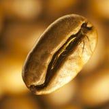 Imagem macro do café-feijão Imagem de Stock
