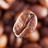 Imagem macro do café-feijão Fotos de Stock