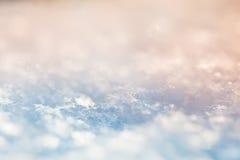 Imagem macro dos flocos de neve Foto de Stock Royalty Free