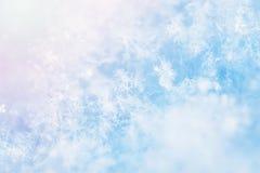 Imagem macro dos flocos de neve Imagens de Stock